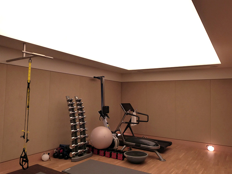 Ceiling panels private gym spanlite